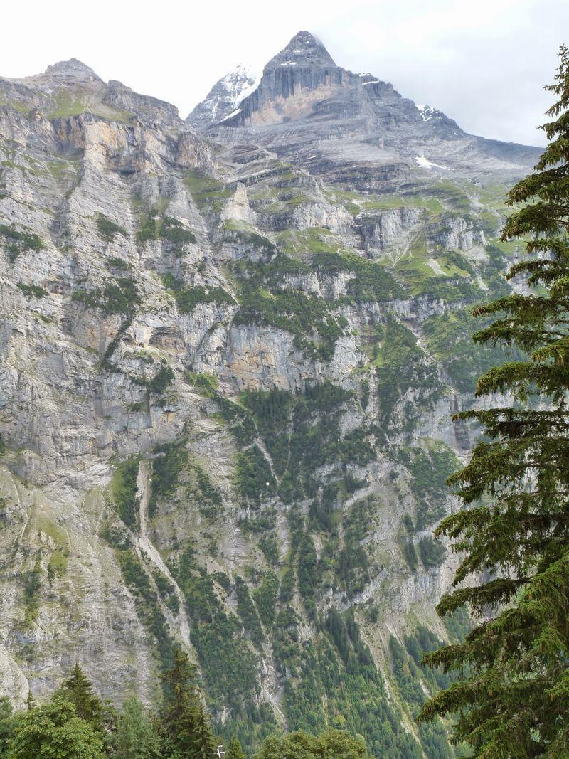 Swiss Alpine Splendor